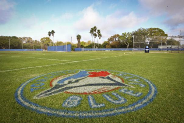 Blue Jays Spring Training Field Logo - Toronto Star