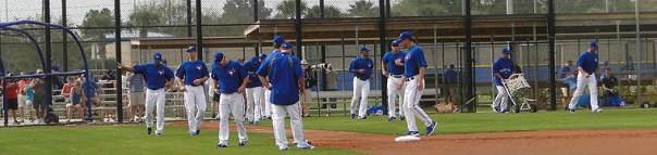 Blue Jays Spring Training Practice