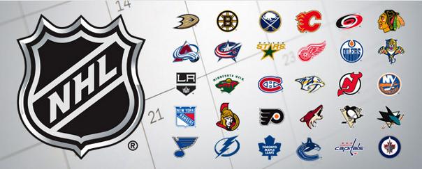 2013 NHL Logos Banner