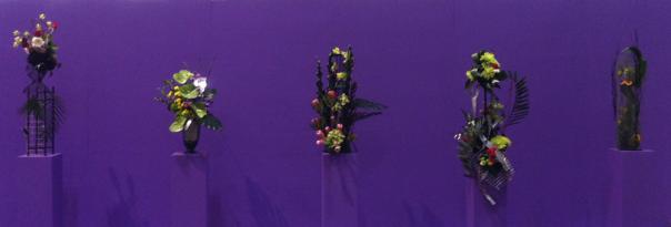 Purple Backround Flower Feature - Canada Blooms 2013