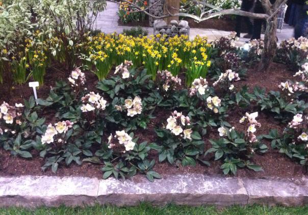 Layered Garden - Canada Blooms 2013