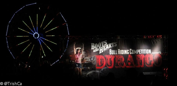 Boots and Hearts 2013 Ferris Wheel and Durango Banner [credit: Trish Cassling]