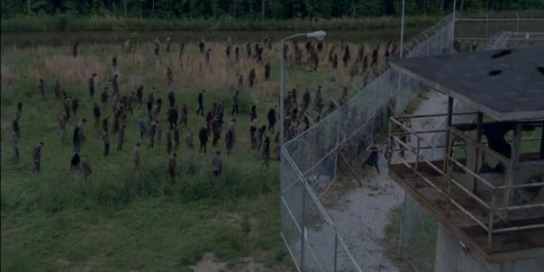 Walkers in the Field The Walking Dead Season 4