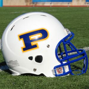 Dillon Panthers Helmet Logo Friday Night Lights
