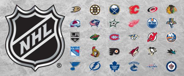 2013-14 NHL Banner